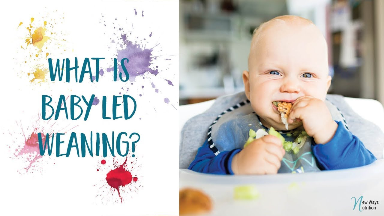 What is Baby Led Weaning? - YouTube