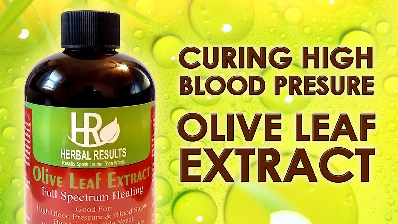 Arjuna Herb High Blood Pressure