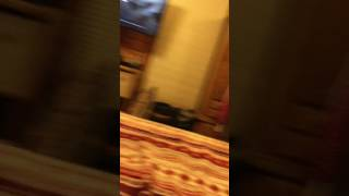 Reaction. Afv: playtime ain't for wimps