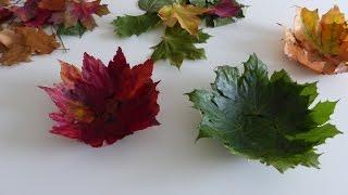 Obstschalen  Design aus Herbstblätter machen - Fruit Bowls - Design of Autumn Leaves