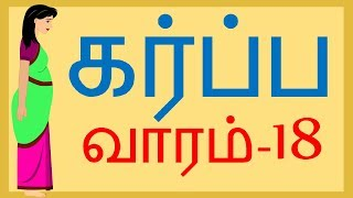 Pregnancy |Week by Week | Tamil | Week 18  | வாரம் 18