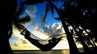 Sloth Logic - When Sloths Lay Awake