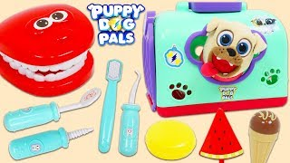 Disney Jr Puppy Dog Pals Rolly Visits Toy Hospital Dentist for a Check Up!