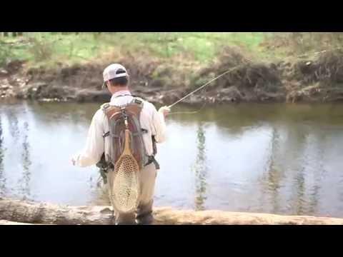 The Angler of Albemarle