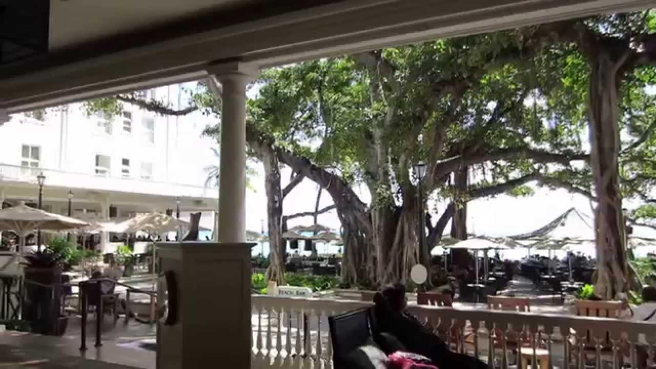 Moana Surfrider Banyan Tree Beach Bar Waikiki 20170415 Pm0200