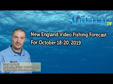 October 17, 2019 New England Fishing Report With Toby Lapinski