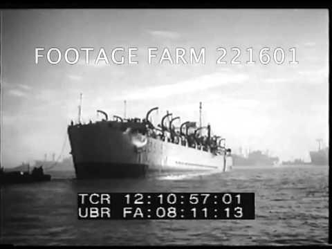 UN Troop in Suez 221601-75.mp4 | Footage Farm