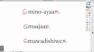 Ojibwe Language Lesson Giinawaa