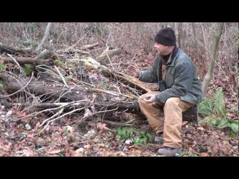 Long Point Basin Land Trust - Hibernaculum Construction