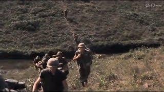 Chuyện Hoa Sim - Đan Nguyên | Nhạc Lính 1975 | Qc Channel