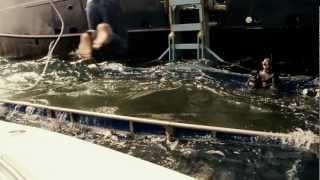 Shark Wranglers Season Teaser