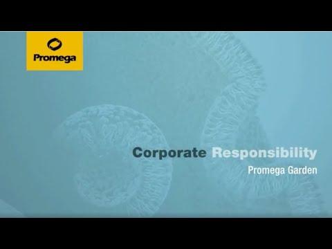 Corporate Responsibility: Promega Garden