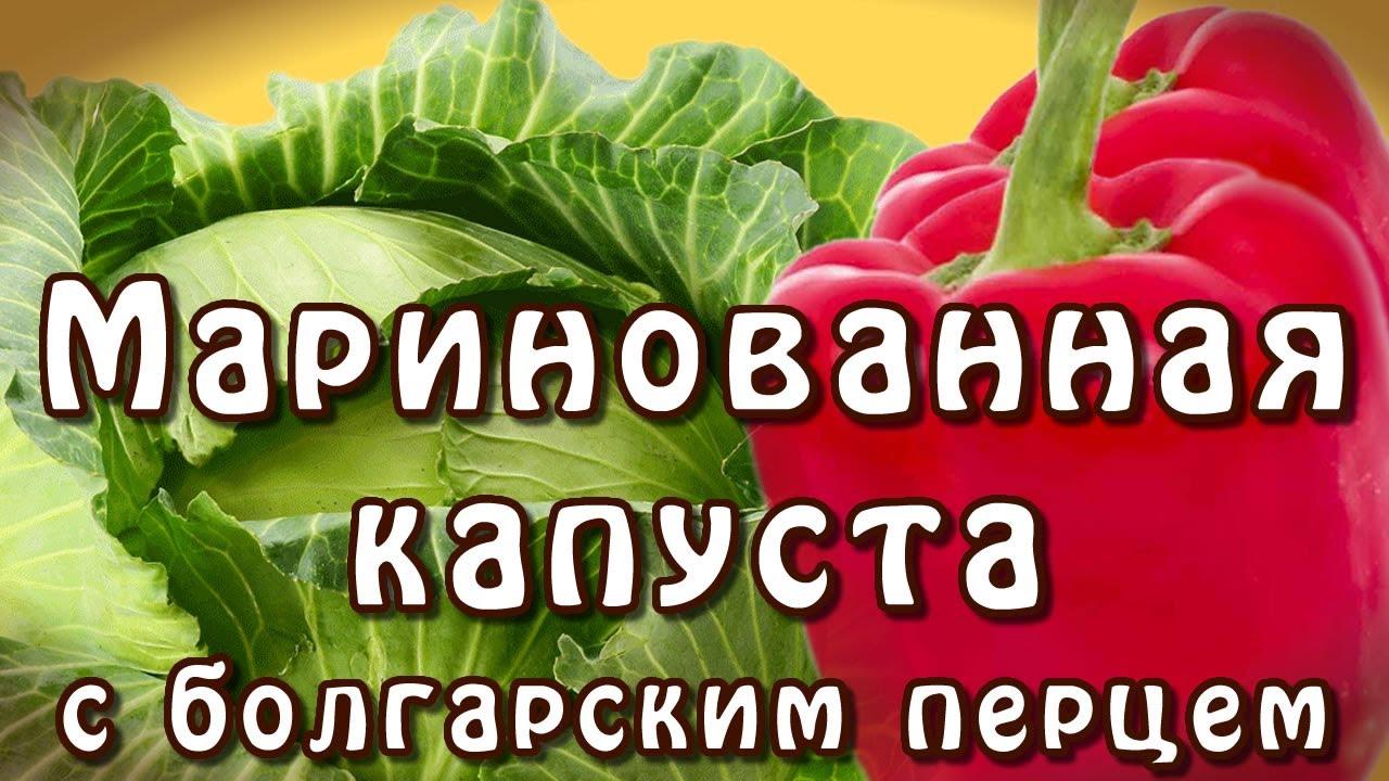 видео маринованная капуста с болгарским перцем