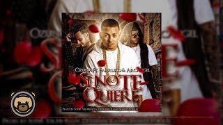 Ozuna - Si No Te Quiere Remix feat. Arcangel & Farruko (Audio Oficial)