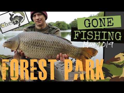 Gone Fishing - Central Forest Park, Hanley. (18+) Carp Fishing May 2019
