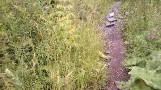 3 часть отдых в Воронежской области в городе Липецк  бандитов встретил и я убежал