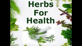 OFF GRID with DOUG and STACY: These are 2 herbs you should grow at ...