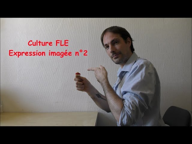 【Culture FLE】Expression imagée n°2