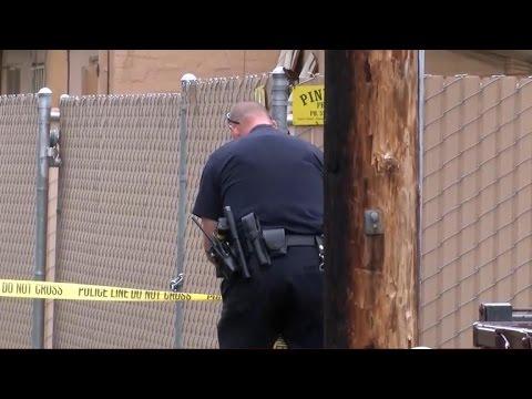 Fresno gunman shoots, kills three