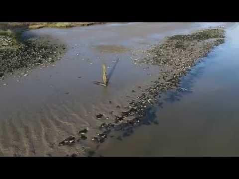 Aerial video sample