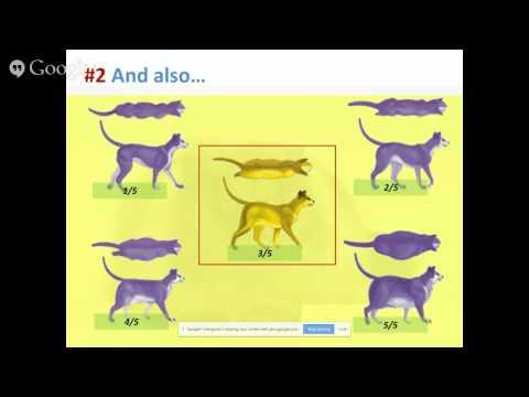 Feline Reproduction Webcast Series : Part I
