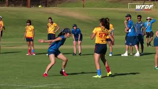 2018 WU24UC  - Day 1 Highlights