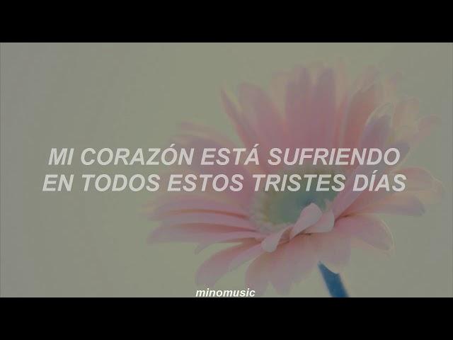 Because Im Stupid - SS501 [Traducida al Español]