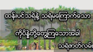 သရဲမကြောက်သောကိုပိန္နဲရဲ့အဖြစ်ဆိုး (သရဲဇာတ္လမ္း)