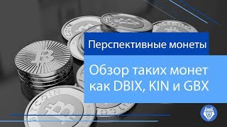 Обзор таких монет как DBIX, KIN и GBX