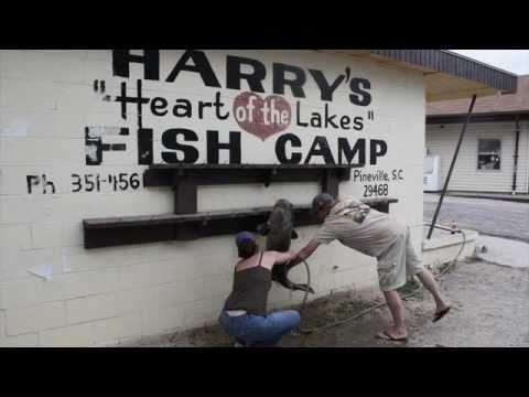 HARRY'S FISH CAMP
