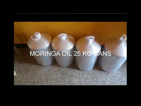 Moringa Products Exporters