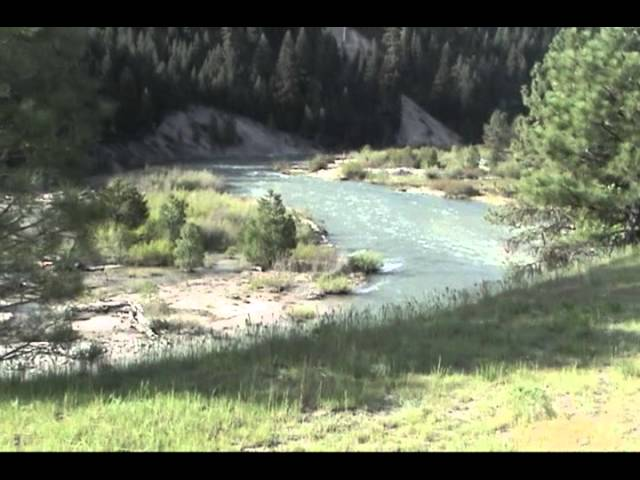 Super Cub Idaho  Weatherby US Forest Service Air Strip