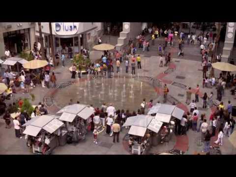 Download Weeds Season 5 Episode 1 - Flash Mob Scene