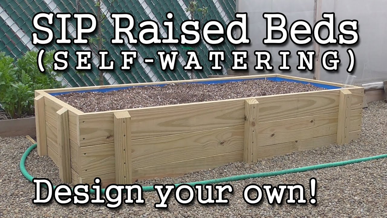 Self watering SIP Sub irrigated Raised Bed Construction How to