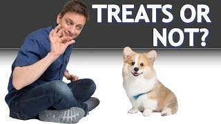 Low Calorie Dog Treats Petco