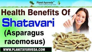 Health Benefits of Shatavari | Asparagus racemosus thumbnail