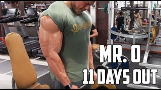 11 DAYS OUT OLYMPIA - SUPERSET Arm Workout - What I Eat in a Day