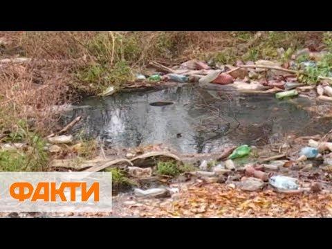 Из-за мусора на Закарпатье Украину могут ждать миллионные штрафы от ЕС