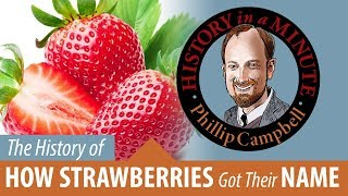 How Strawberries Got Their Names: History in a Minute (Episode 54)