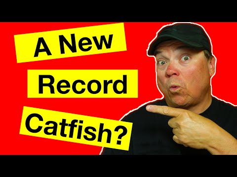 A New Record Catfish