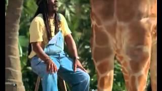 Прикольная+Реклама+Skittles Растаман+доит+Жирафа(, 2014-03-07T14:57:55.000Z)