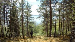 Поход с ночёвкой в лес к озеру Онего|Варю Уху на огне!!!