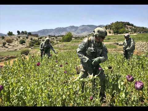 video essay HH3: Afghanistan Drug War