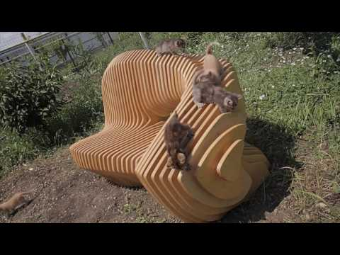 Making a parametric bench garden design cats VmumokFilm Victor Meshkov MehDesign