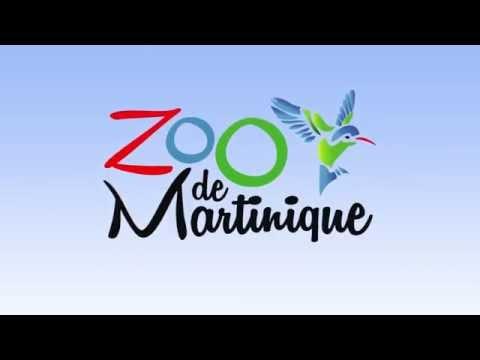 Bilboard TV : ZOO de MARTINIQUE - Nov. 14