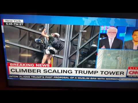 Trump tower climber Steve