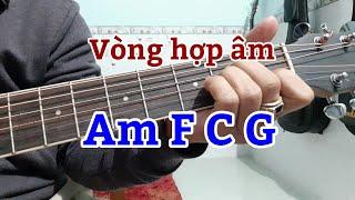 Tp luyn vng hp m Am F C G
