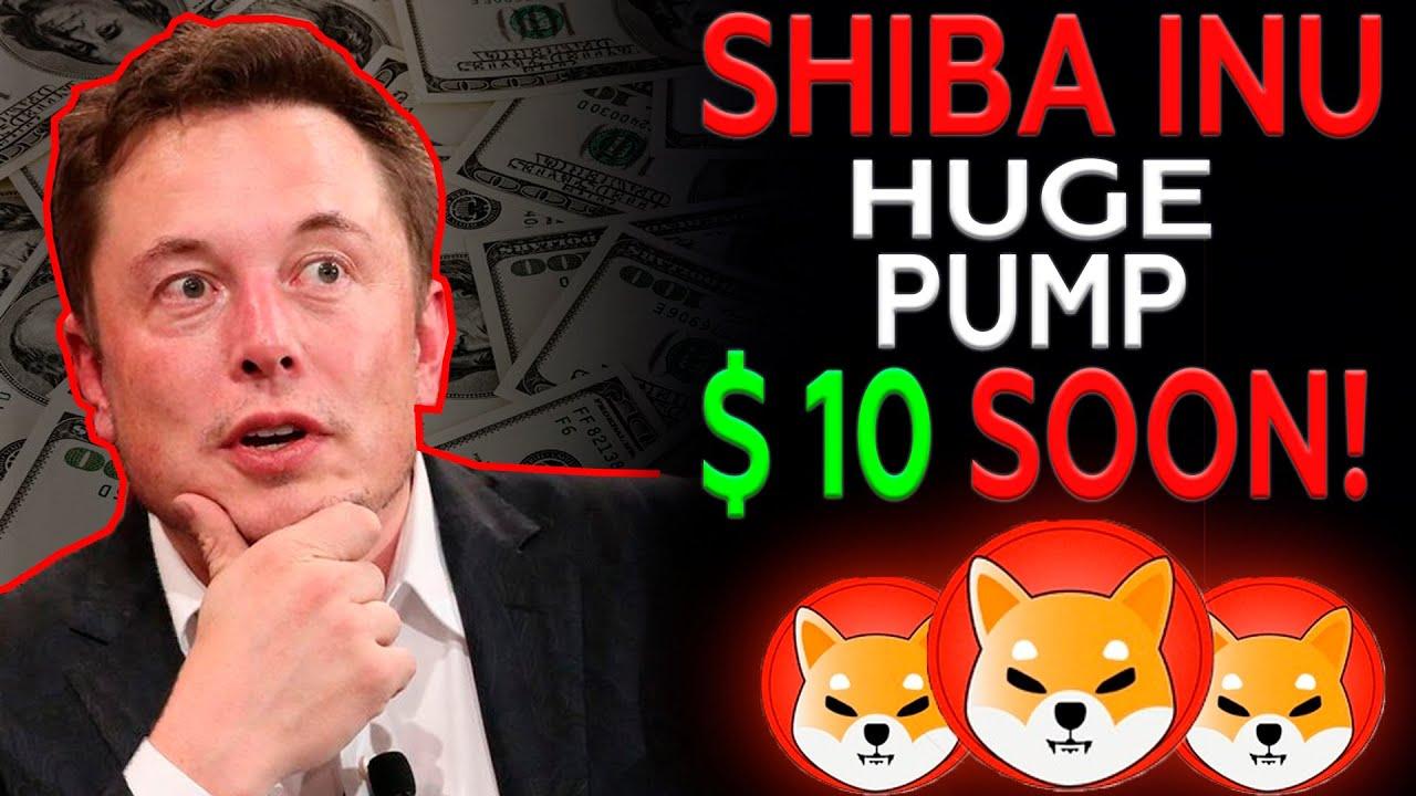 Elon Musk: Shiba Inu To The Moon - Should You Buy? Shiba Inu Price Prediction & Shib News