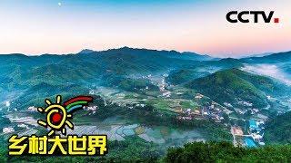《乡村大世界》 20190518 家乡:安徽·岳西| CCTV农业