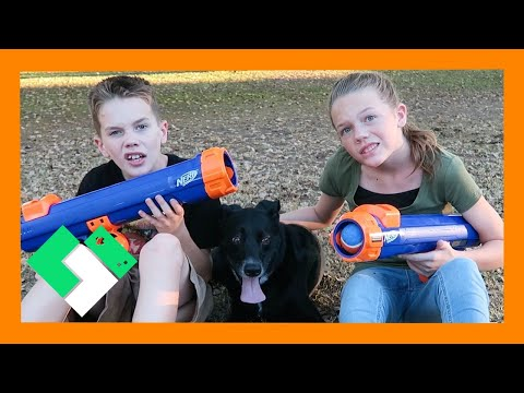 NERF DOG FAIL (Day 1655) | Clintus.tv